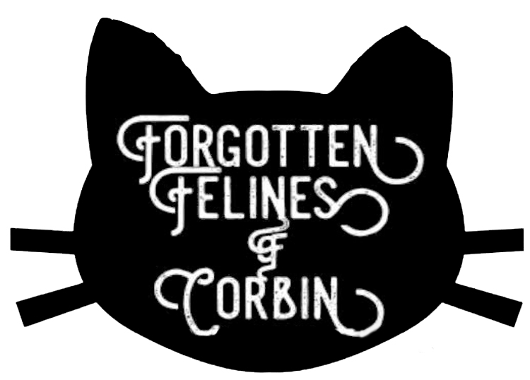 Forgotten Felines of Corbin, KY Inc. - a place to help cats from overpopulation, spay/neutering, vaccinations, adoptions and more in the Corbin, KY area.