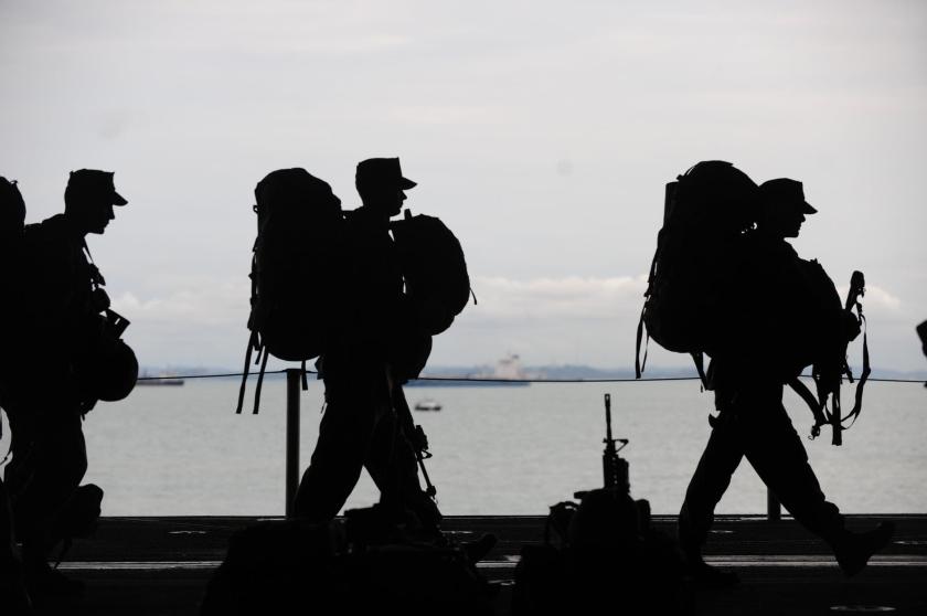 Meowy Veterans Day