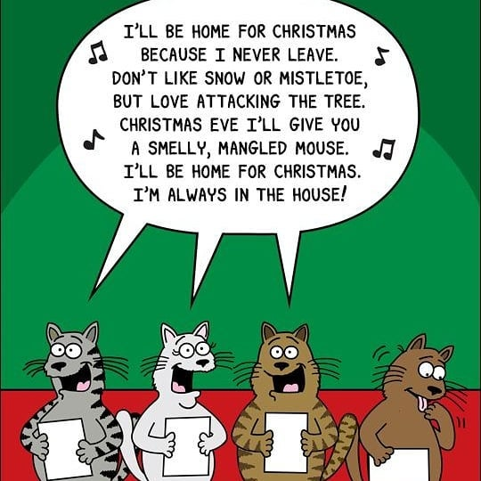 Cat Christmas Songs (Cat CatMas Songs) | Metzger Comic