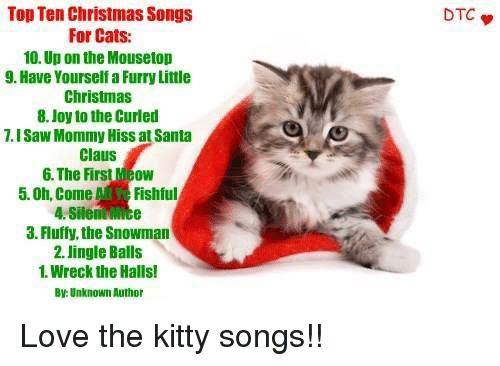 Cat Christmas Songs (Cat CatMas Songs)