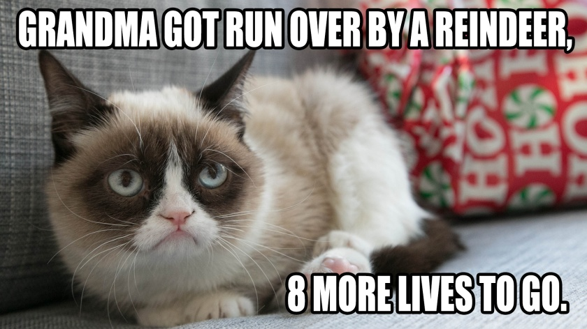 Grandma Got Run over by a reindeer ... 8 More Lives to Go!
