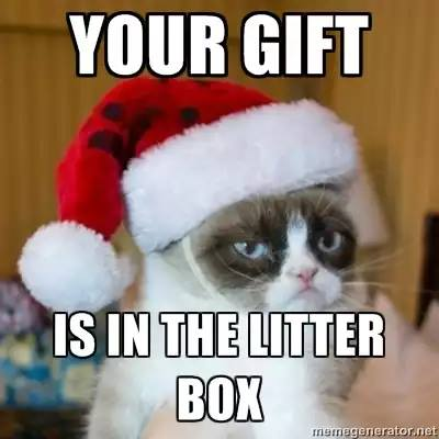 Your gift is in the litter box