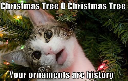 Christmas Tree O Christmas Tree Your ornaments are history