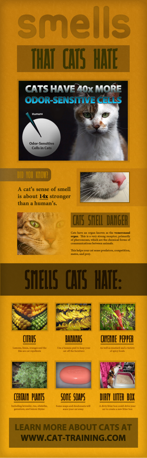 Smells Cats Hate