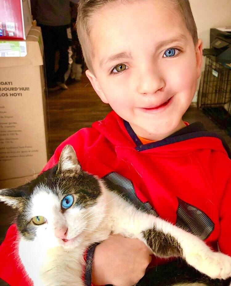 Meet noon adopted by a young boy who was bullied for having two different colored eyes and a cleft palate. Guess what? Moon has the same rate condition having two different colored eyes and a cleft palate. This Oklahoma boy is Madden Humphreys. | Photo Christina Humphreys