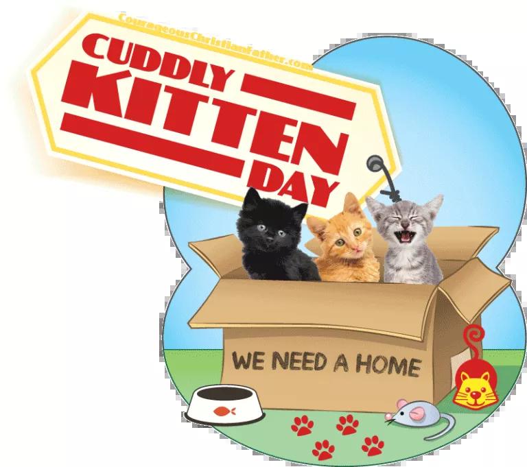 CuddlyKittenDay