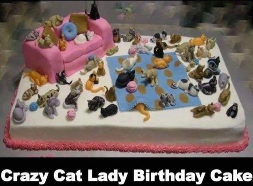 Fabulous Crazy Cat Lady Birthday Cakes 2 Cats And A Blog Funny Birthday Cards Online Necthendildamsfinfo