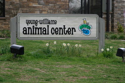 Young Williams Animal Center achieves 'no-kill' status - YWAC is local to East Tennessee area serving the Knox County area. This is a huge milestone for pet centers.