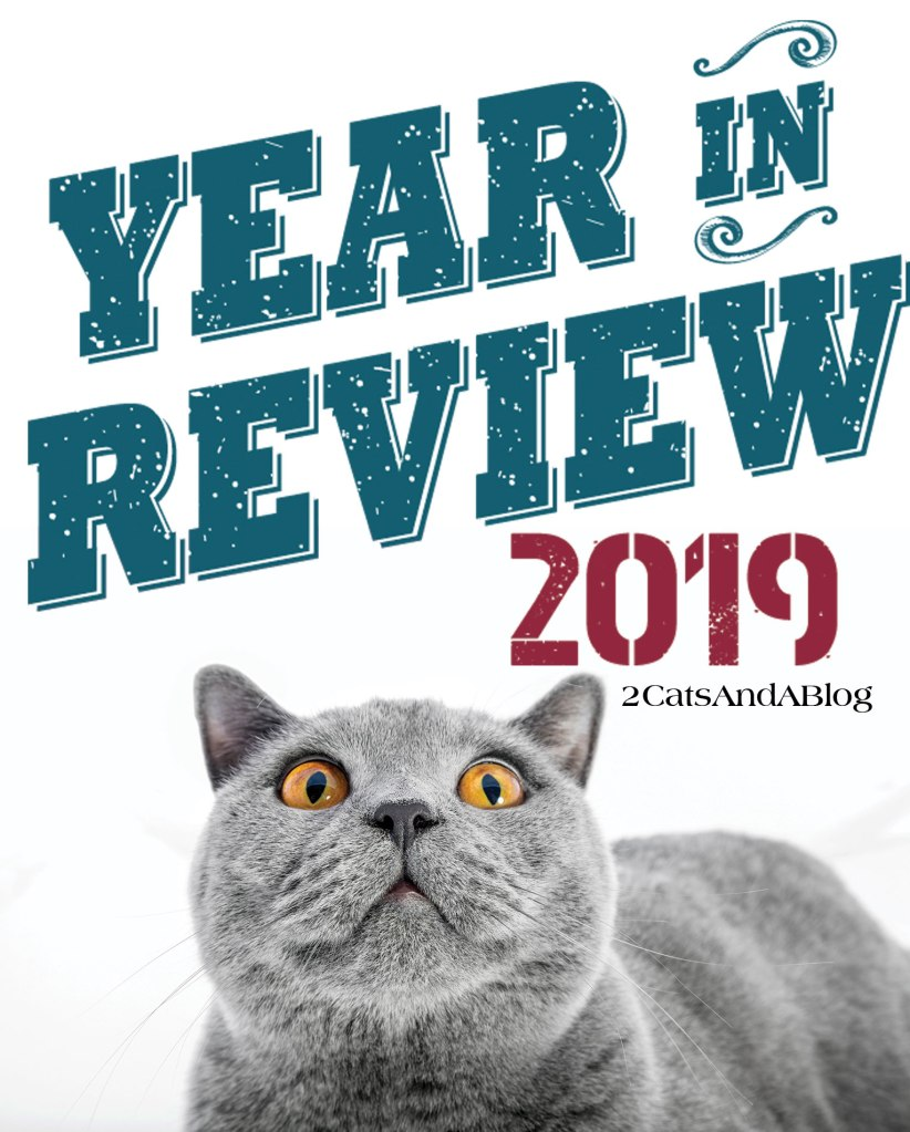 Year in Review - Pawpular Cat Blog Post & Countries from 2019 - A list of the top 10 visiting countries and the top 10 blog post.